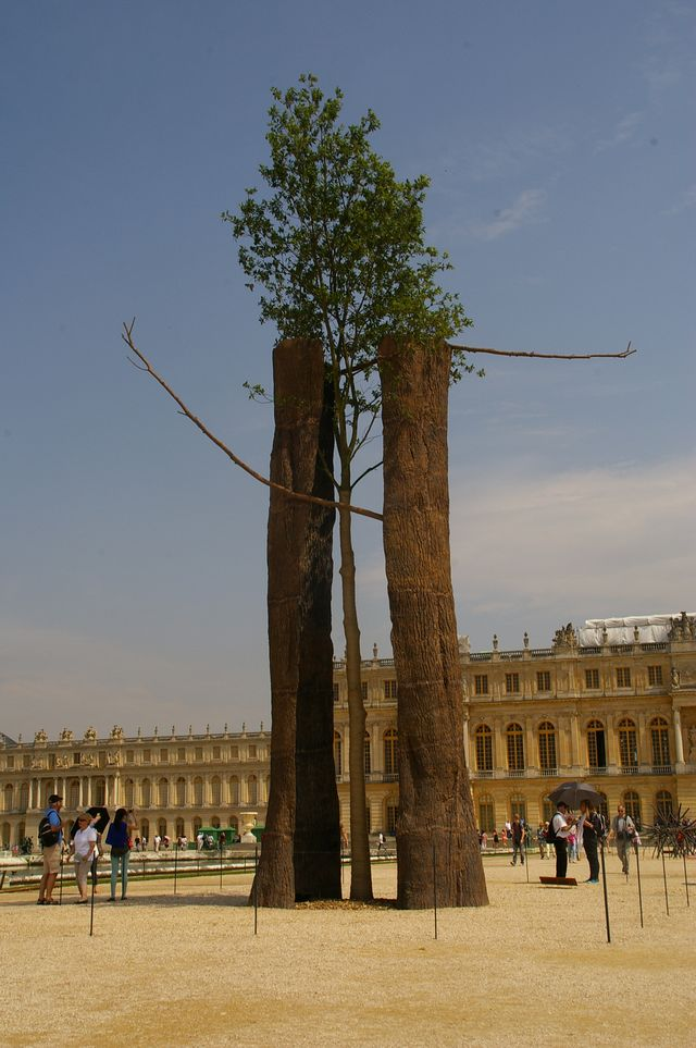 Penone Versailles 2